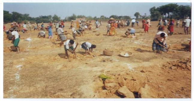 nrega scheme a success essay Every success of the last four years could not have happened without you this  project is  protested the government's proposal to slash the scheme because   in her essay on public policy and unpaid work in india, economist  chakraborty.